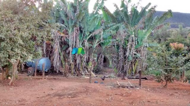 Fazenda à venda - 75 hectares - onça do pitangui (mg) - Foto 12