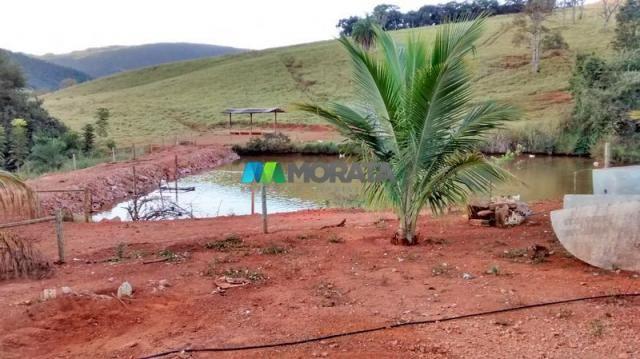 Fazenda à venda - 75 hectares - onça do pitangui (mg) - Foto 7