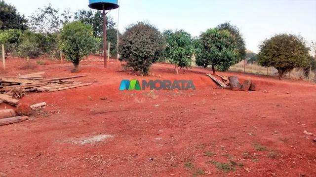 Fazenda à venda - 75 hectares - onça do pitangui (mg) - Foto 11