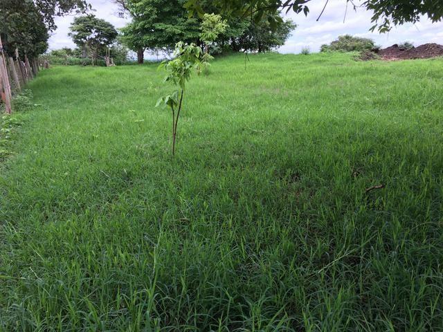 Chácara em Bela Vista de Goiás com casa - Foto 20