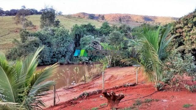 Fazenda à venda - 75 hectares - onça do pitangui (mg) - Foto 10