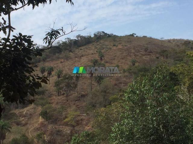 Fazenda à venda - 97 hectares - itabirito (mg) - Foto 5