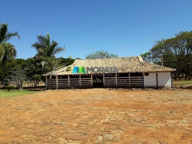 Fazenda à venda - 401 hectares - paraopeba (mg) - Foto 8
