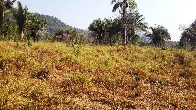 Fazenda 142 ha Serra de São Vicente MT - Foto 11