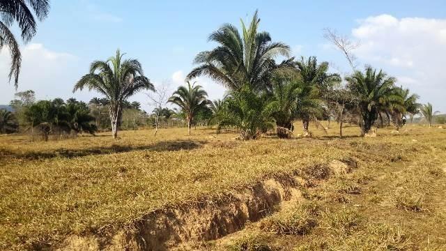 Fazenda 142 ha Serra de São Vicente MT - Foto 3