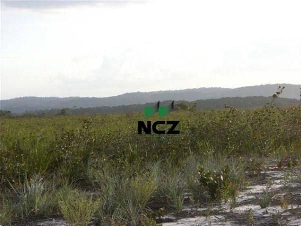 Fazenda à venda, 4080000 m² por r$ 5.000.000 - barra grande - maraú/ba - Foto 16