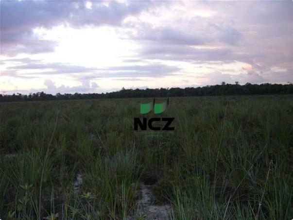 Fazenda à venda, 4080000 m² por r$ 5.000.000 - barra grande - maraú/ba - Foto 14