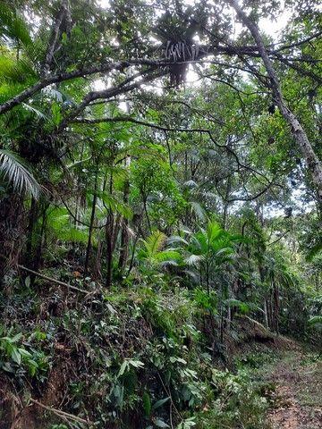 Sítio  em Barra Velha SC - Foto 12