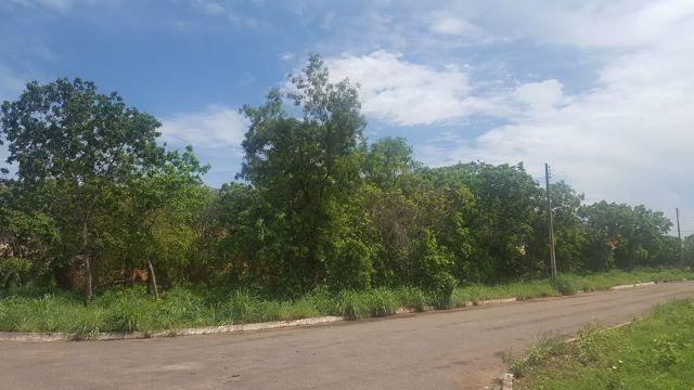 Lote de 542 m² na 509 Sul - Bem Localizado - Foto 5