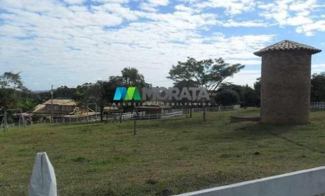 Fazenda pecuária - 220 hectares - belo vale (mg) - Foto 9