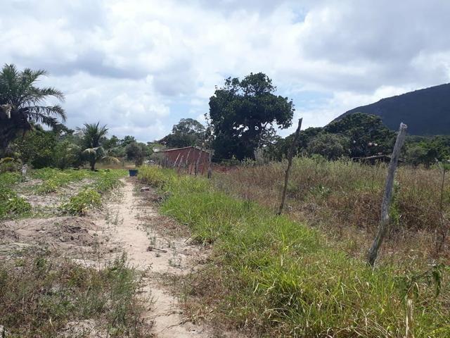 Terreno na Serra de Itabaiana - Foto 4