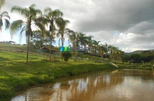 Fazenda / haras à venda - 16 hectares - brumadinho (mg) - Foto 8