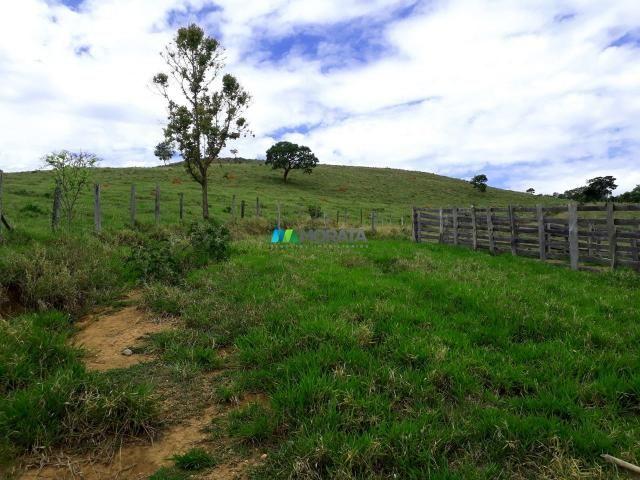 Fazenda à venda - 90 hectares - lavras (mg) - Foto 8
