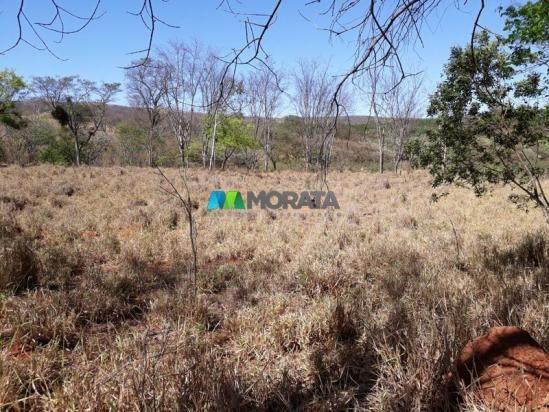 Fazenda à venda - 401 hectares - paraopeba (mg) - Foto 10