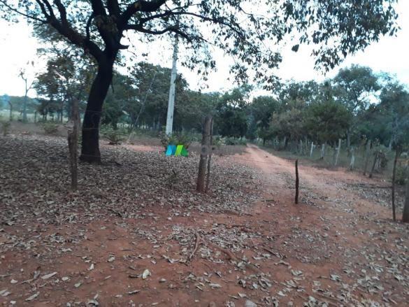Fazendinha - 08 hectares - paraopeba (mg) - Foto 10