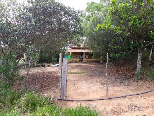 Fazenda à venda - 90 hectares - lavras (mg) - Foto 16
