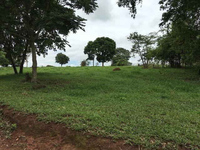 Chácara em Bela Vista de Goiás com casa - Foto 11