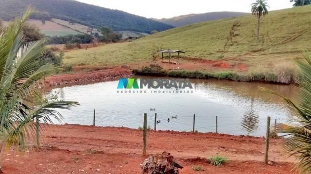 Fazenda à venda - 75 hectares - onça do pitangui (mg) - Foto 5