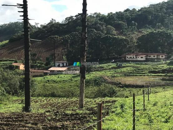 Fazenda à venda - 40 hectares - região santana dos montes (mg) - Foto 9