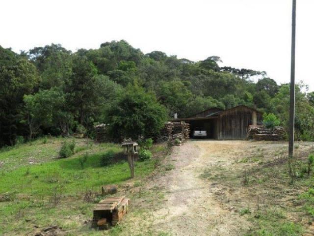 Chácara para Venda, 71.959,20 m², Piên / PR, bairro Poço Frio, 3 dormitórios - Foto 4