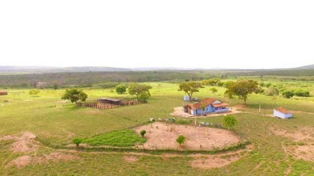 Fazenda Jaguaquara - Foto 7