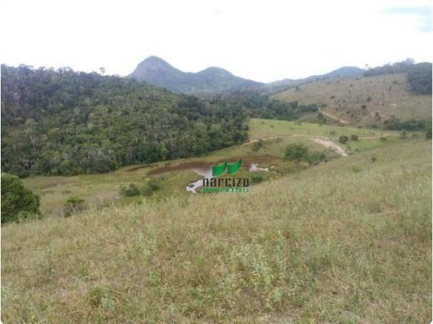 Linda fazenda à venda, 8000000 m² por r$ 6.300.000 - inocoop - itamaraju/ba - Foto 7