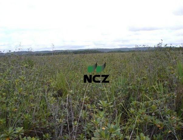 Fazenda à venda, 4080000 m² por r$ 5.000.000 - barra grande - maraú/ba - Foto 20