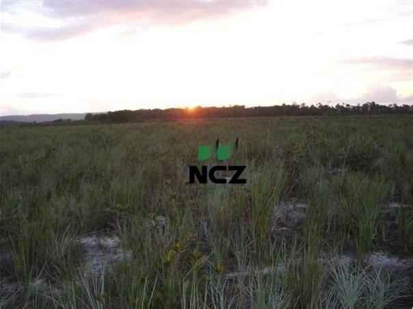 Fazenda à venda, 4080000 m² por r$ 5.000.000 - barra grande - maraú/ba - Foto 13