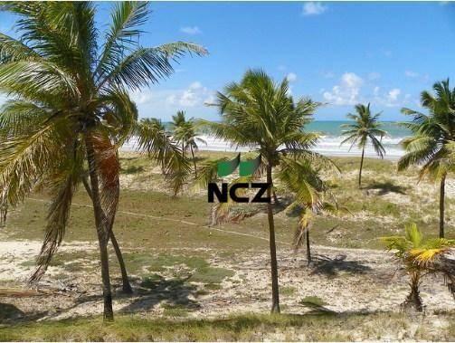 Fazenda à venda, 380000 m² por r$ 3.040.000 - litoral norte - jandaíra/ba - Foto 11
