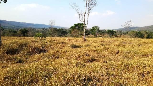 Fazenda 142 ha Serra de São Vicente MT - Foto 8