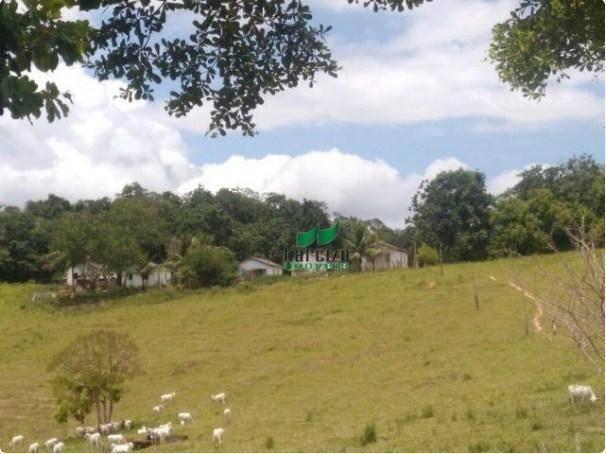 Linda fazenda à venda, 8000000 m² por r$ 6.300.000 - inocoop - itamaraju/ba - Foto 13