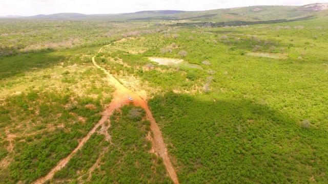 Fazenda Jaguaquara - Foto 19