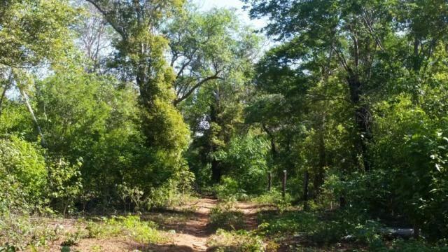 Fazenda à venda, 150000000 m² por R$ 55.809.000,00 - Zona Rural - Pilão Arcado/BA - Foto 6
