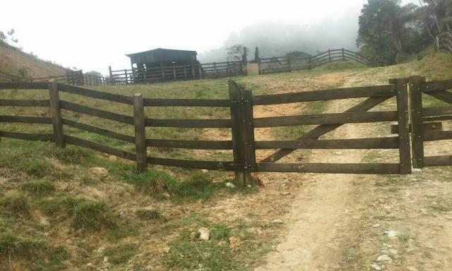 Fazenda 300 mts da BR 116 - Foto 6