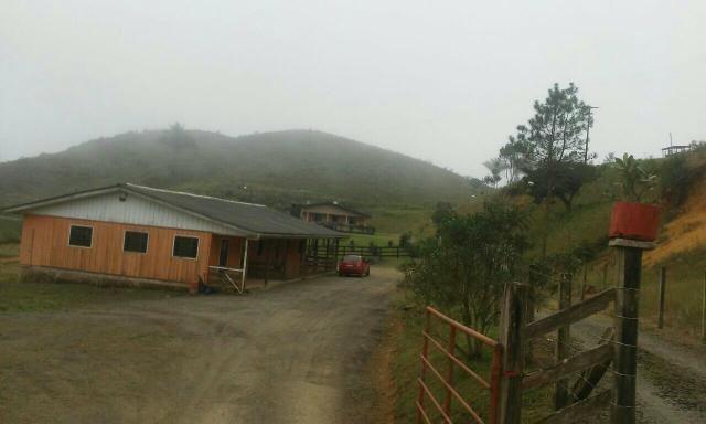 Fazenda 300 mts da BR 116 - Foto 3