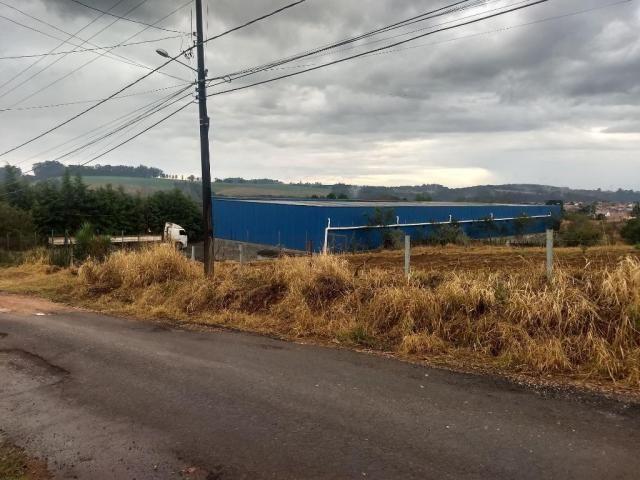 Galpão à venda, 2279 m² por r$ 1.566.950,00 - contorno - ponta grossa/pr