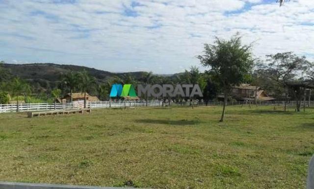 Fazenda pecuária - 220 hectares - belo vale (mg) - Foto 10