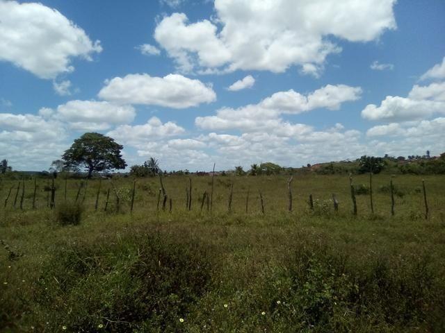 Vendo ou troco terreno / sítio em Alagoinhas Bahia - Foto 3
