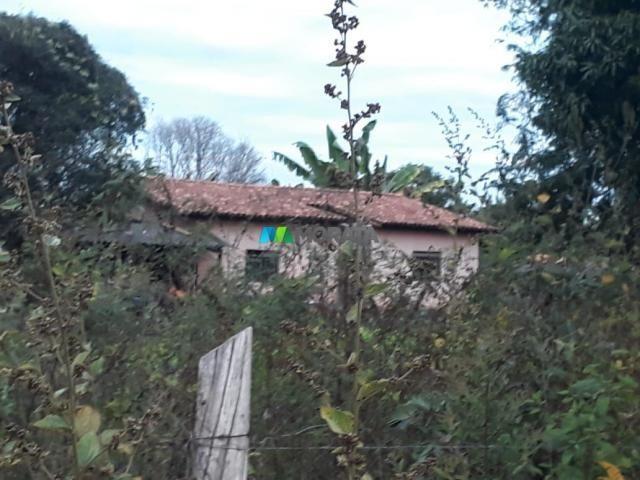 Fazendinha - 08 hectares - paraopeba (mg) - Foto 7