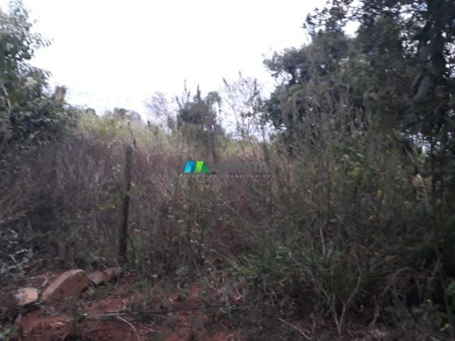 Fazendinha - 08 hectares - paraopeba (mg) - Foto 14