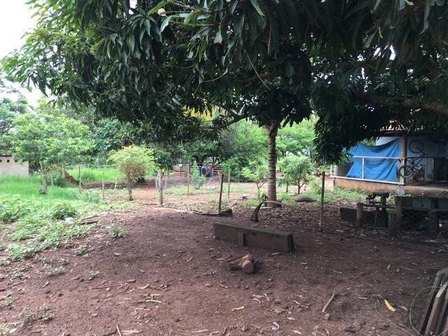 Chácara em Bela Vista de Goiás com casa - Foto 16