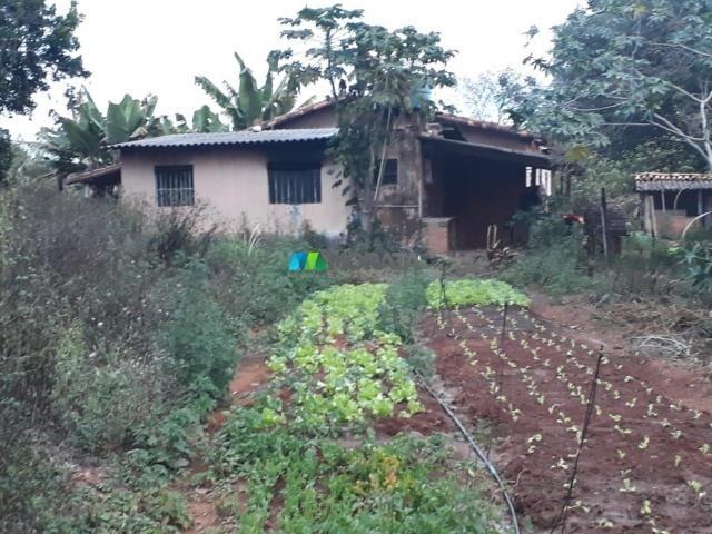 Fazendinha - 08 hectares - paraopeba (mg) - Foto 8
