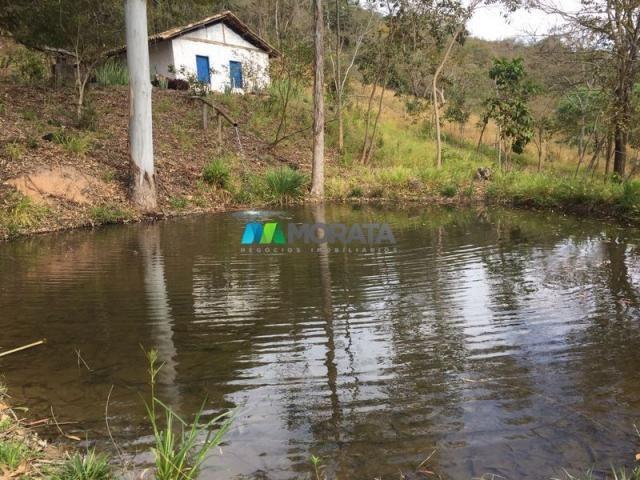 Fazenda à venda - 97 hectares - itabirito (mg)