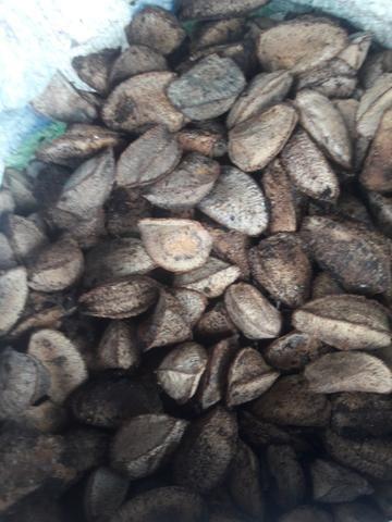 Vendo castanha - Foto 2