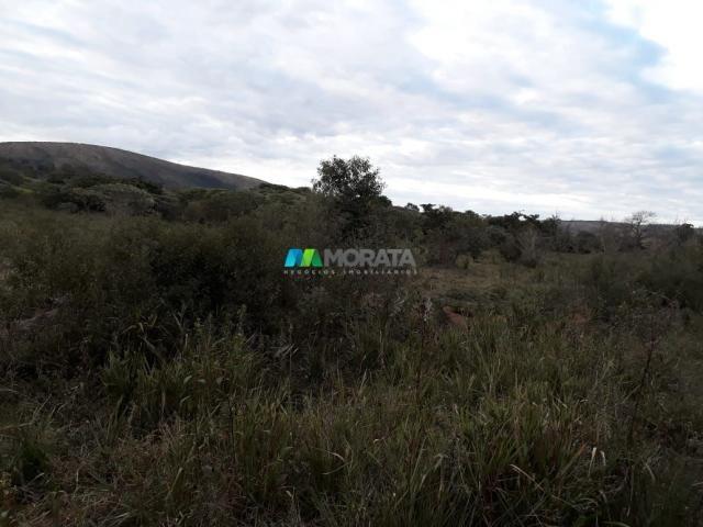 Fazendinha - 08 hectares - paraopeba (mg) - Foto 15
