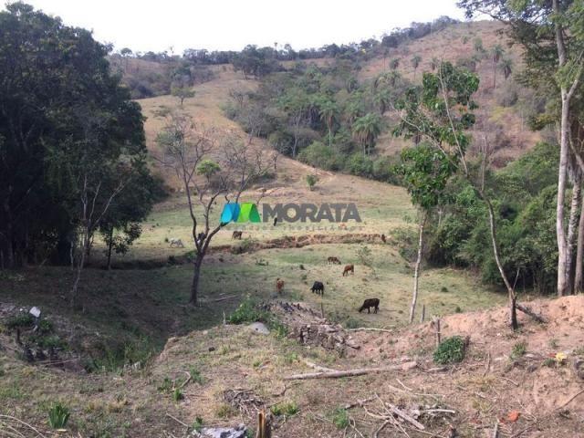 Fazenda à venda - 97 hectares - itabirito (mg) - Foto 3