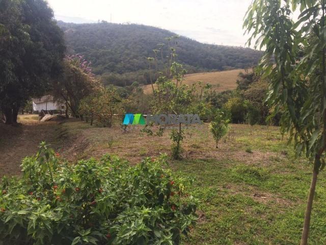 Fazenda à venda - 97 hectares - itabirito (mg) - Foto 9