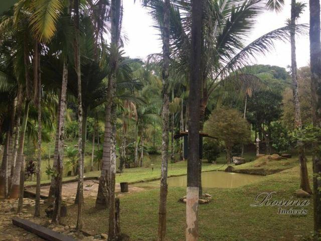 Chácara com 3 dormitórios à venda, 24189 m² por r$ 320.000,00 - rio sagrado - morretes/pr - Foto 3