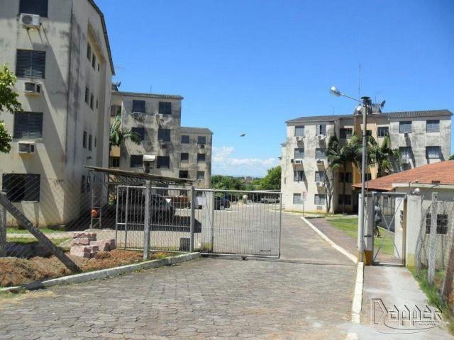 Apartamento à venda com 2 dormitórios em Rondônia, Novo hamburgo cod:17458