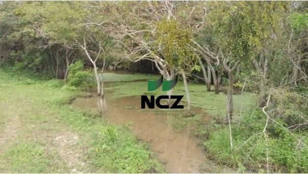 Fazenda à venda, 12620000 m² por r$ 22.000.000,00 - aeroporto - feira de santana/ba - Foto 10